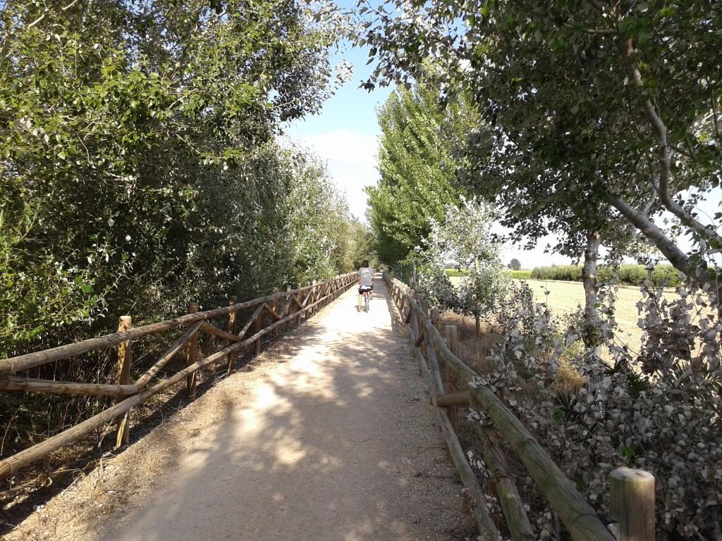 Delta de l'Ebre, Passeig fluvial, Turisme rural, Casa rural
