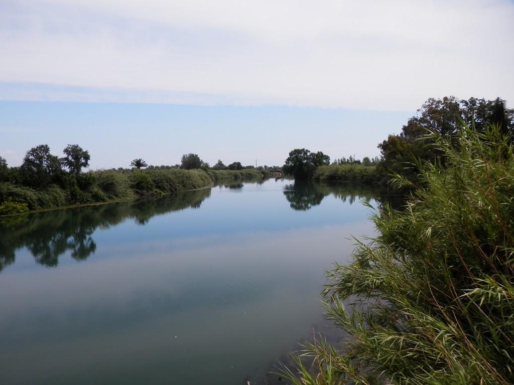 El riu Ebre des del pont