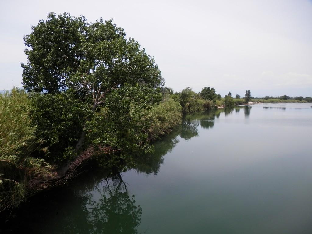 L'Ebre i la ribera